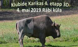2019. aasta Klubide Karika 4. etapp – 3D standardring Räbi külas